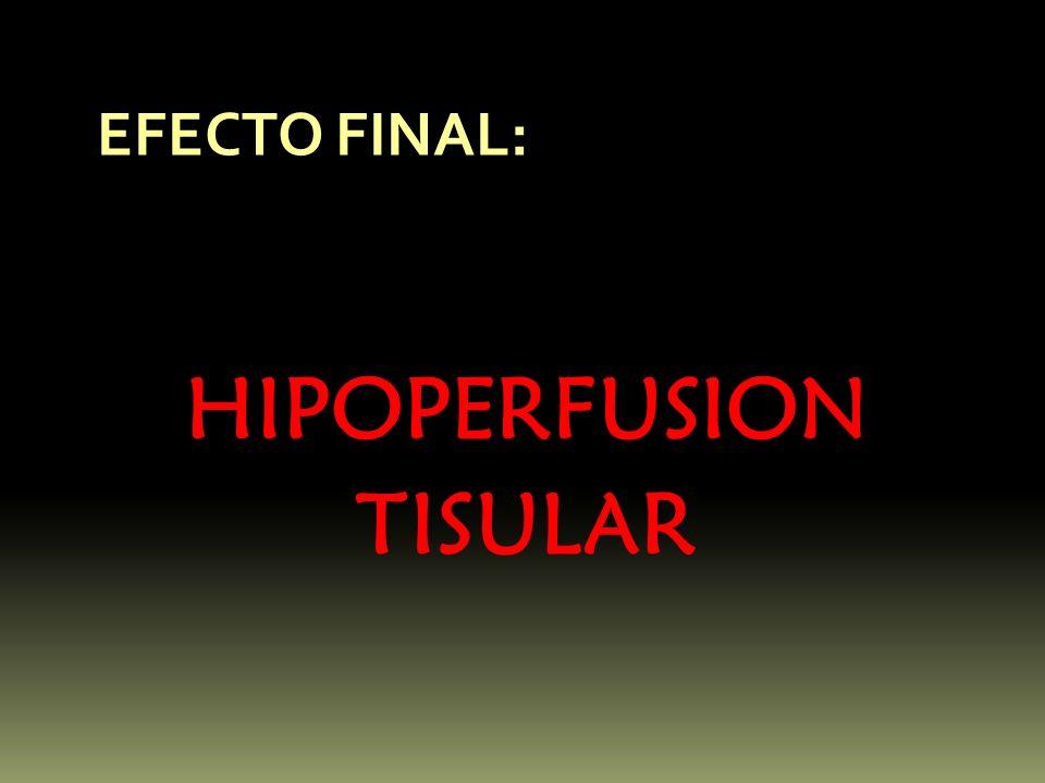 EFECTO FINAL: HIPOPERFUSION TISULAR