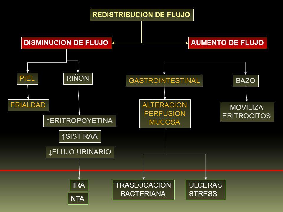 REDISTRIBUCION DE FLUJO DISMINUCION DE FLUJOAUMENTO DE FLUJO PIELRIÑON GASTROINTESTINALBAZO ERITROPOYETINA SIST RAA FLUJO URINARIO FRIALDAD IRA NTA AL