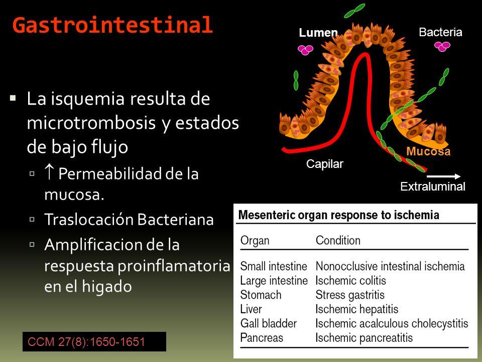 Gastrointestinal La isquemia resulta de microtrombosis y estados de bajo flujo Permeabilidad de la mucosa. Traslocación Bacteriana Amplificacion de la