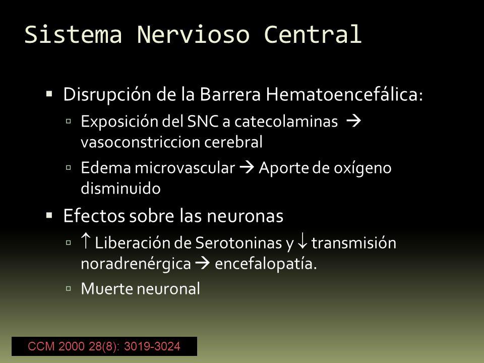 Sistema Nervioso Central Disrupción de la Barrera Hematoencefálica: Exposición del SNC a catecolaminas vasoconstriccion cerebral Edema microvascular A