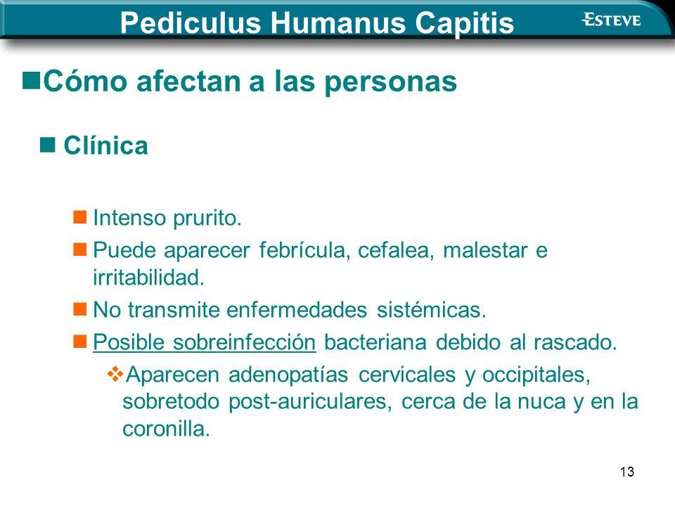 13 Cómo afectan a las personas Clínica Intenso prurito.