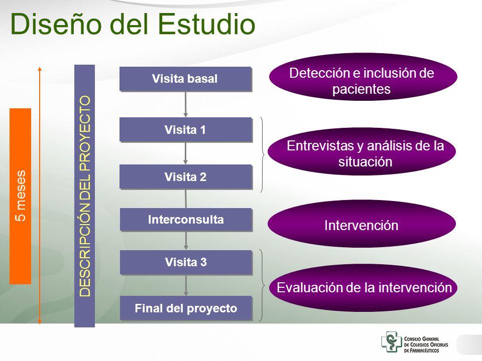 Visita basal Visita 1 Final del proyecto Visita 2 Visita 3 Interconsulta Detección e inclusión de pacientes Entrevistas y análisis de la situación Int
