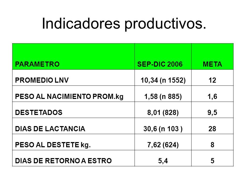 Indicadores productivos. PARAMETROSEP-DIC 2006META PROMEDIO LNV10,34 (n 1552)12 PESO AL NACIMIENTO PROM.kg1,58 (n 885)1,6 DESTETADOS8,01 (828)9,5 DIAS