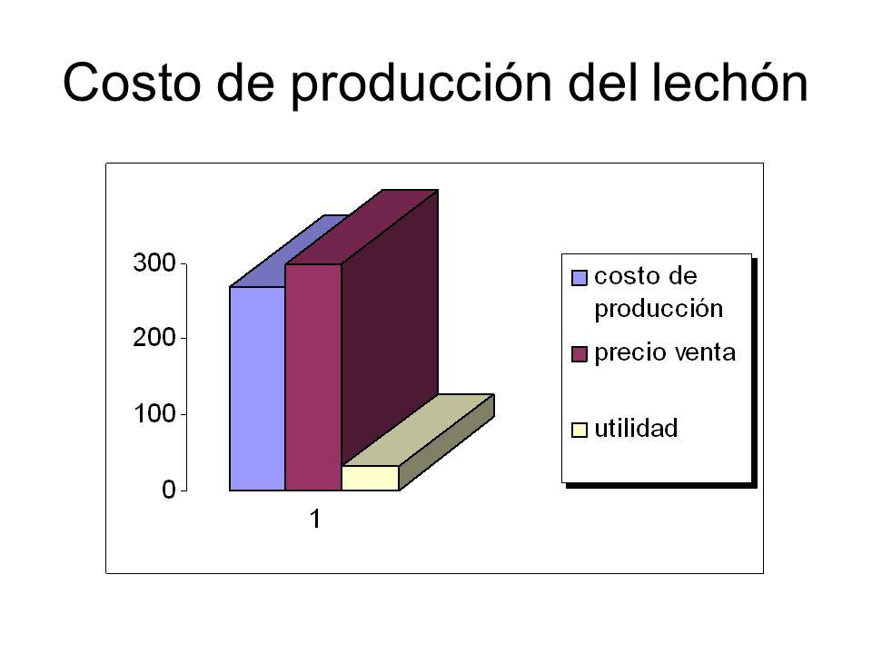 Costo de producción del lechón