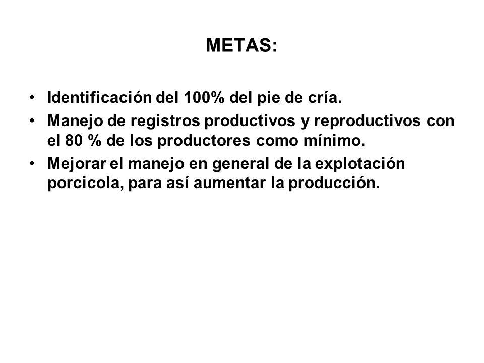 METAS: Identificación del 100% del pie de cría. Manejo de registros productivos y reproductivos con el 80 % de los productores como mínimo. Mejorar el