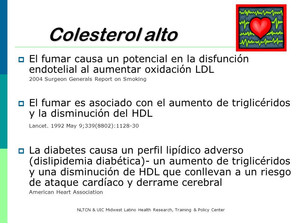 Colesterol alto El fumar causa un potencial en la disfunción endotelial al aumentar oxidación LDL 2004 Surgeon Generals Report on Smoking El fumar es