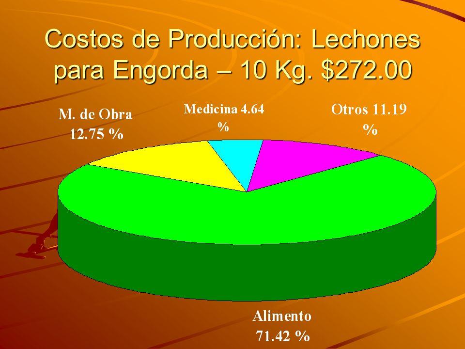 Costos de Producción: Lechones para Engorda – 10 Kg. $272.00