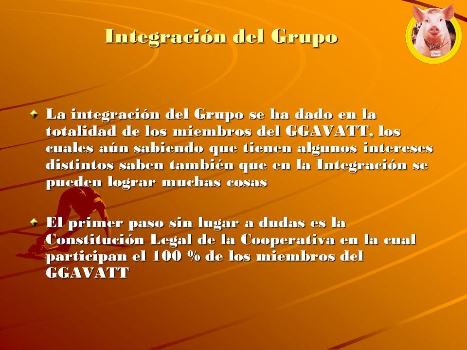 Integración del Grupo La integración del Grupo se ha dado en la totalidad de los miembros del GGAVATT, los cuales aún sabiendo que tienen algunos inte