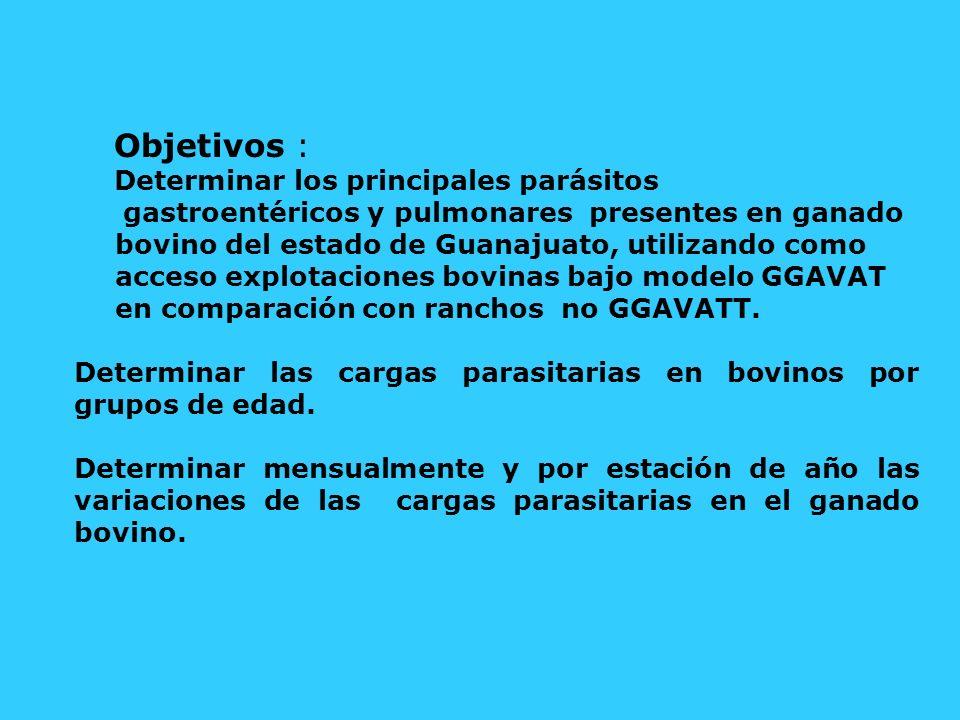 Objetivos : Determinar los principales parásitos gastroentéricos y pulmonares presentes en ganado bovino del estado de Guanajuato, utilizando como acc
