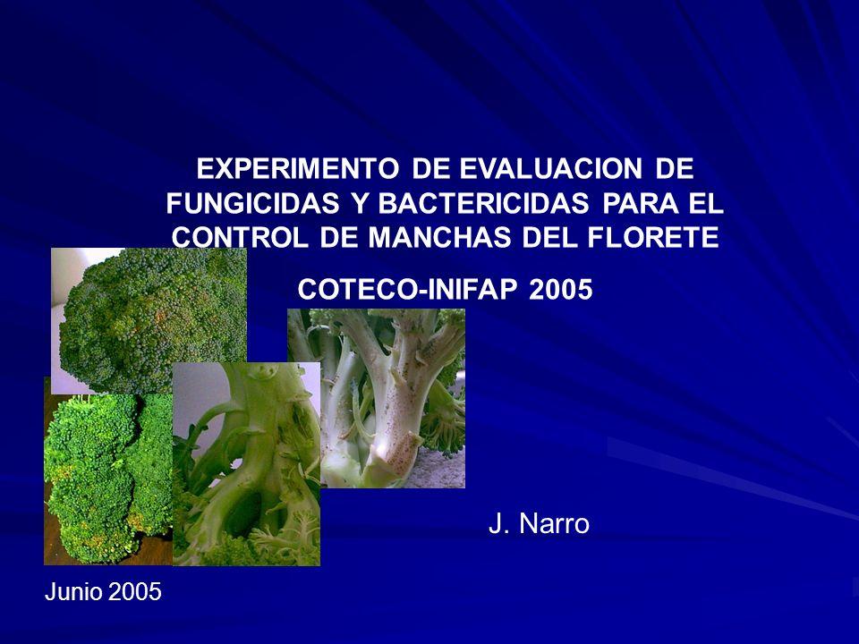 EXPERIMENTO DE EVALUACION DE FUNGICIDAS Y BACTERICIDAS PARA EL CONTROL DE MANCHAS DEL FLORETE COTECO-INIFAP 2005 J. Narro Junio 2005