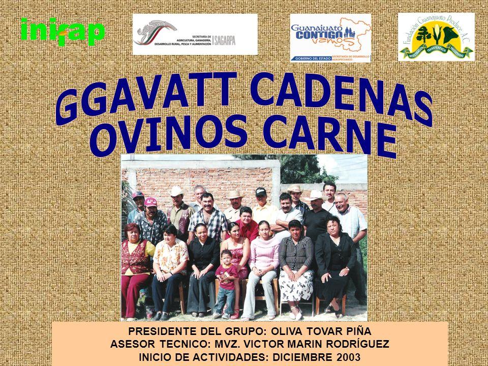 MARCO DE REFERENCIA Integrantes Actuales: 10 productores En 8 comunidades de Apaseo el Alto y Jerécuaro, Guanajuato Escolaridad promedio: Tercero de primaria Edad promedio: 46 años No.