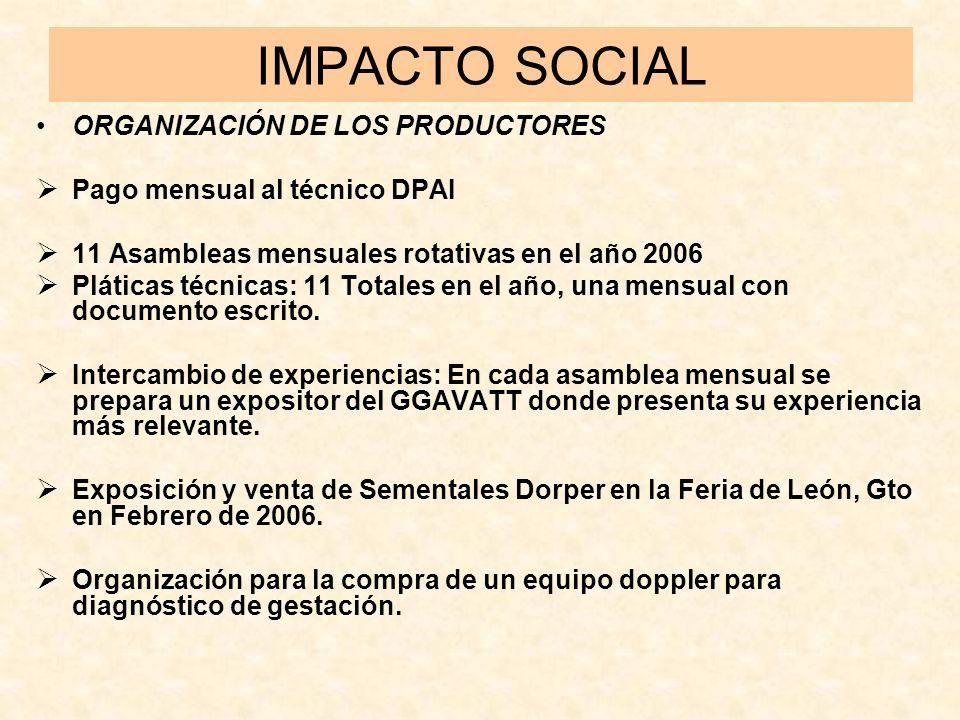 IMPACTO SOCIAL ORGANIZACIÓN DE LOS PRODUCTORES Pago mensual al técnico DPAI 11 Asambleas mensuales rotativas en el año 2006 Pláticas técnicas: 11 Tota