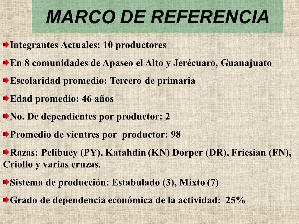 MARCO DE REFERENCIA Integrantes Actuales: 10 productores En 8 comunidades de Apaseo el Alto y Jerécuaro, Guanajuato Escolaridad promedio: Tercero de p