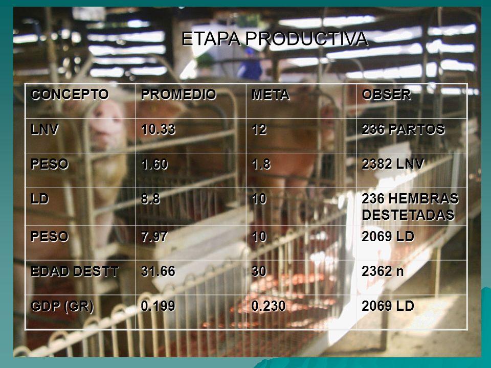 ETAPA PRODUCTIVA CONCEPTOPROMEDIOMETAOBSERLNV10.3312 236 PARTOS PESO1.601.8 2382 LNV LD8.810 236 HEMBRAS DESTETADAS PESO7.9710 2069 LD EDAD DESTT 31.6