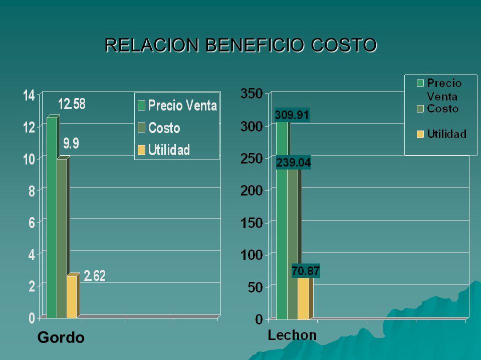 RELACION BENEFICIO COSTO Gordo