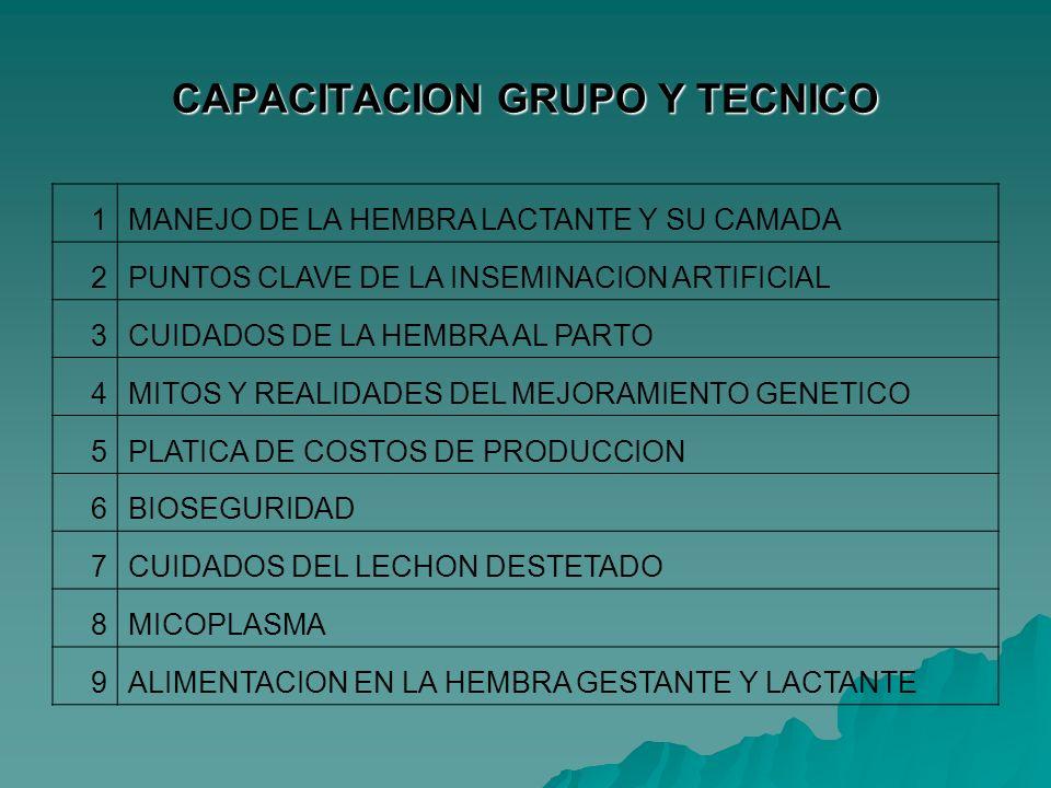 CAPACITACION GRUPO Y TECNICO 1MANEJO DE LA HEMBRA LACTANTE Y SU CAMADA 2PUNTOS CLAVE DE LA INSEMINACION ARTIFICIAL 3CUIDADOS DE LA HEMBRA AL PARTO 4MI