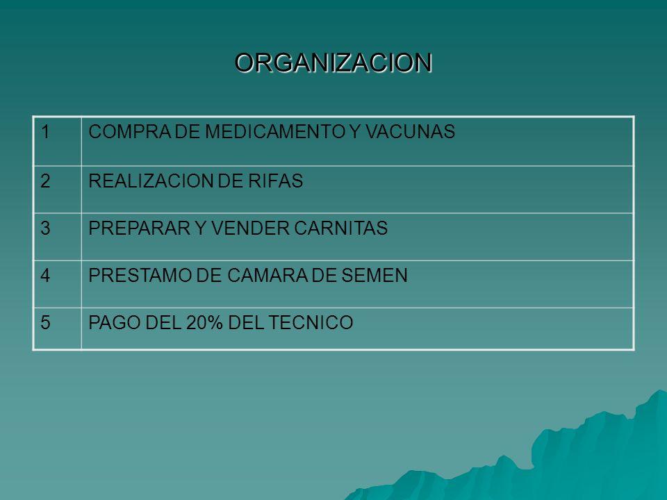 ORGANIZACION 1COMPRA DE MEDICAMENTO Y VACUNAS 2REALIZACION DE RIFAS 3PREPARAR Y VENDER CARNITAS 4PRESTAMO DE CAMARA DE SEMEN 5PAGO DEL 20% DEL TECNICO