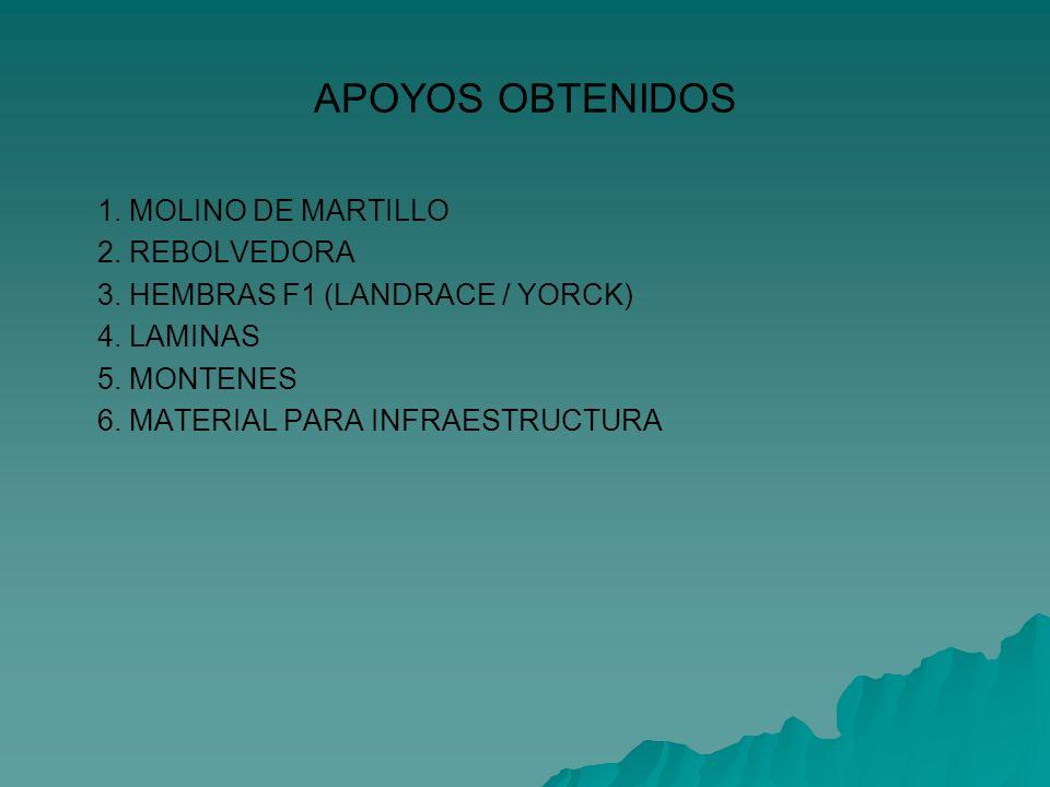 APOYOS OBTENIDOS 1. MOLINO DE MARTILLO 2. REBOLVEDORA 3. HEMBRAS F1 (LANDRACE / YORCK) 4. LAMINAS 5. MONTENES 6. MATERIAL PARA INFRAESTRUCTURA