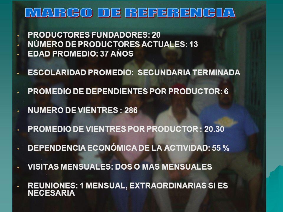 PRODUCTORES FUNDADORES: 20 NÚMERO DE PRODUCTORES ACTUALES: 13 EDAD PROMEDIO: 37 AÑOS ESCOLARIDAD PROMEDIO: SECUNDARIA TERMINADA PROMEDIO DE DEPENDIENT