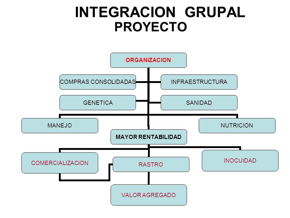 PROYECTO INTEGRACION GRUPAL