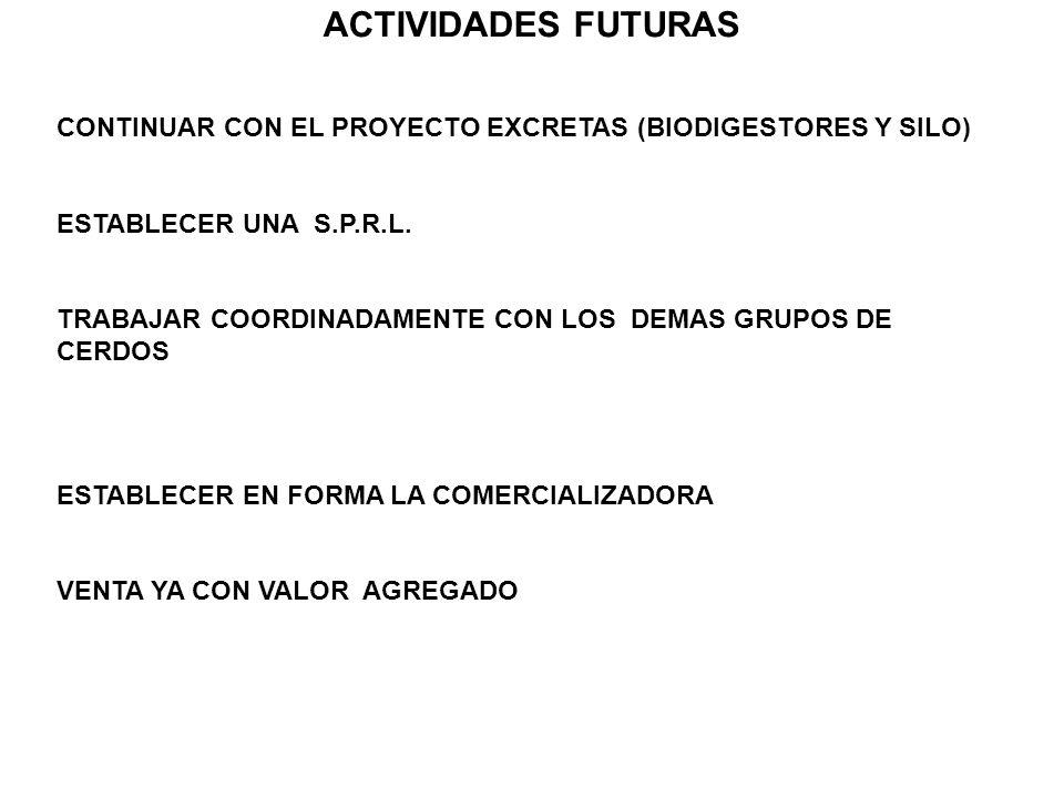ACTIVIDADES FUTURAS CONTINUAR CON EL PROYECTO EXCRETAS (BIODIGESTORES Y SILO) ESTABLECER UNA S.P.R.L. TRABAJAR COORDINADAMENTE CON LOS DEMAS GRUPOS DE