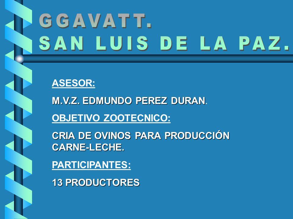 LOCALIZACIÓN GEOGRAFICA: SAN LUIS DE LA PAZ ESTA UBICADO EN LATITUD 21 º 37 Y LONGITUD 100º 15.