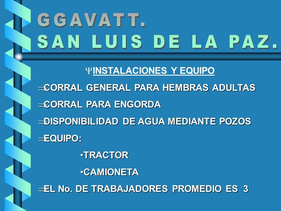 INSTALACIONES Y EQUIPO CORRAL GENERAL PARA HEMBRAS ADULTAS CORRAL GENERAL PARA HEMBRAS ADULTAS CORRAL PARA ENGORDA CORRAL PARA ENGORDA DISPONIBILIDAD