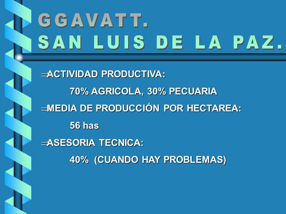 ACTIVIDAD PRODUCTIVA: ACTIVIDAD PRODUCTIVA: 70% AGRICOLA, 30% PECUARIA MEDIA DE PRODUCCIÓN POR HECTAREA: MEDIA DE PRODUCCIÓN POR HECTAREA: 56 has ASES