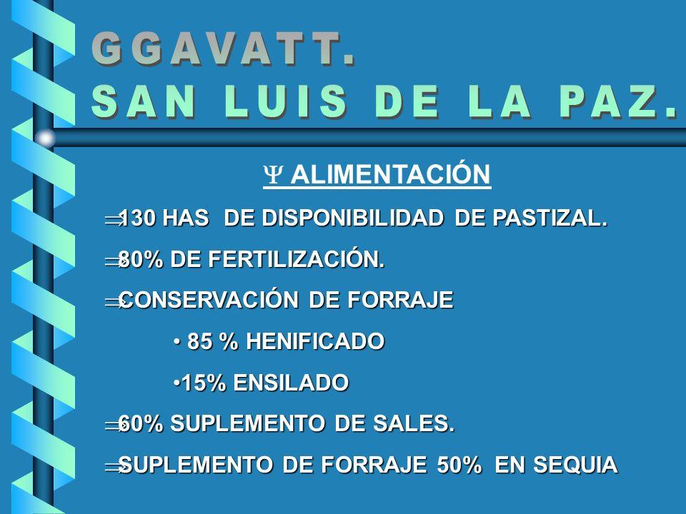 ALIMENTACIÓN 130 HAS DE DISPONIBILIDAD DE PASTIZAL. 130 HAS DE DISPONIBILIDAD DE PASTIZAL. 80% DE FERTILIZACIÓN. 80% DE FERTILIZACIÓN. CONSERVACIÓN DE