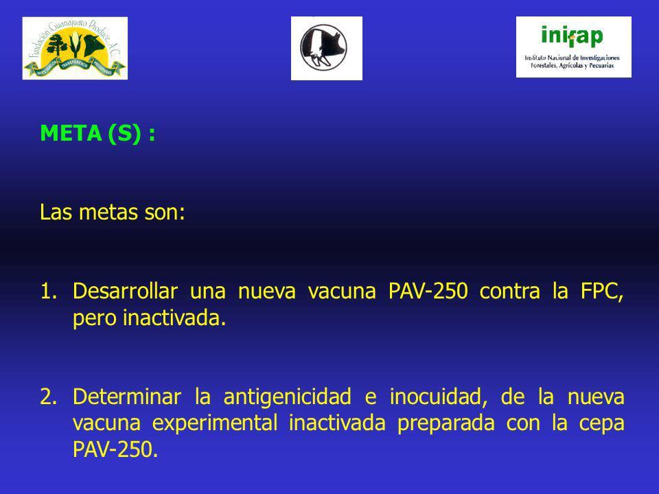 META (S) : Las metas son: 1.Desarrollar una nueva vacuna PAV-250 contra la FPC, pero inactivada. 2.Determinar la antigenicidad e inocuidad, de la nuev