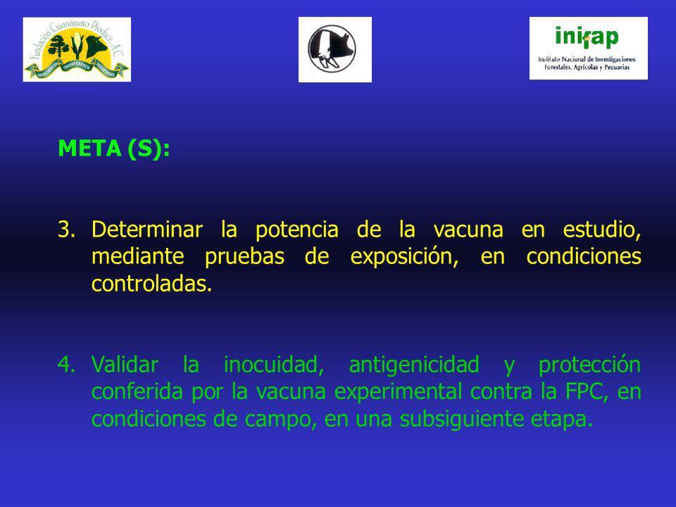 META (S): 3.Determinar la potencia de la vacuna en estudio, mediante pruebas de exposición, en condiciones controladas. 4.Validar la inocuidad, antige