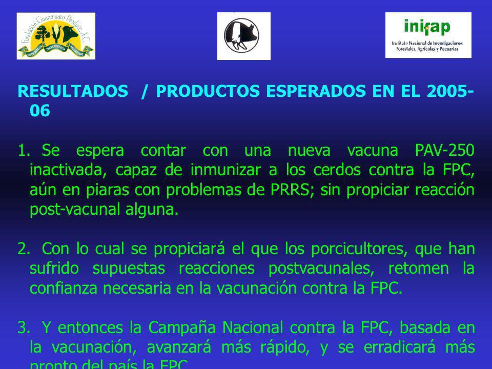 RESULTADOS / PRODUCTOS ESPERADOS EN EL 2005- 06 1.Se espera contar con una nueva vacuna PAV-250 inactivada, capaz de inmunizar a los cerdos contra la