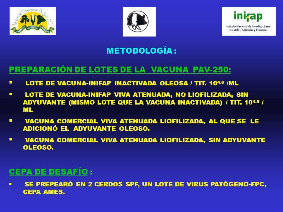 METODOLOGÍA : PREPARACIÓN DE LOTES DE LA VACUNA PAV-250: LOTE DE VACUNA-INIFAP INACTIVADA OLEOSA / TIT. 10 4.6 /ML LOTE DE VACUNA-INIFAP VIVA ATENUADA