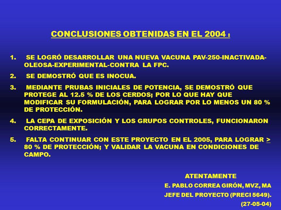 CONCLUSIONES OBTENIDAS EN EL 2004 : 1. SE LOGRÓ DESARROLLAR UNA NUEVA VACUNA PAV-250-INACTIVADA- OLEOSA-EXPERIMENTAL-CONTRA LA FPC. 2. SE DEMOSTRÓ QUE