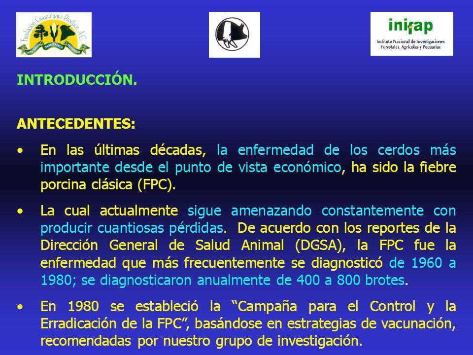 RESULTADOS / PRODUCTOS ESPERADOS EN EL 2005- 06 1.Se espera contar con una nueva vacuna PAV-250 inactivada, capaz de inmunizar a los cerdos contra la FPC, aún en piaras con problemas de PRRS; sin propiciar reacción post-vacunal alguna.