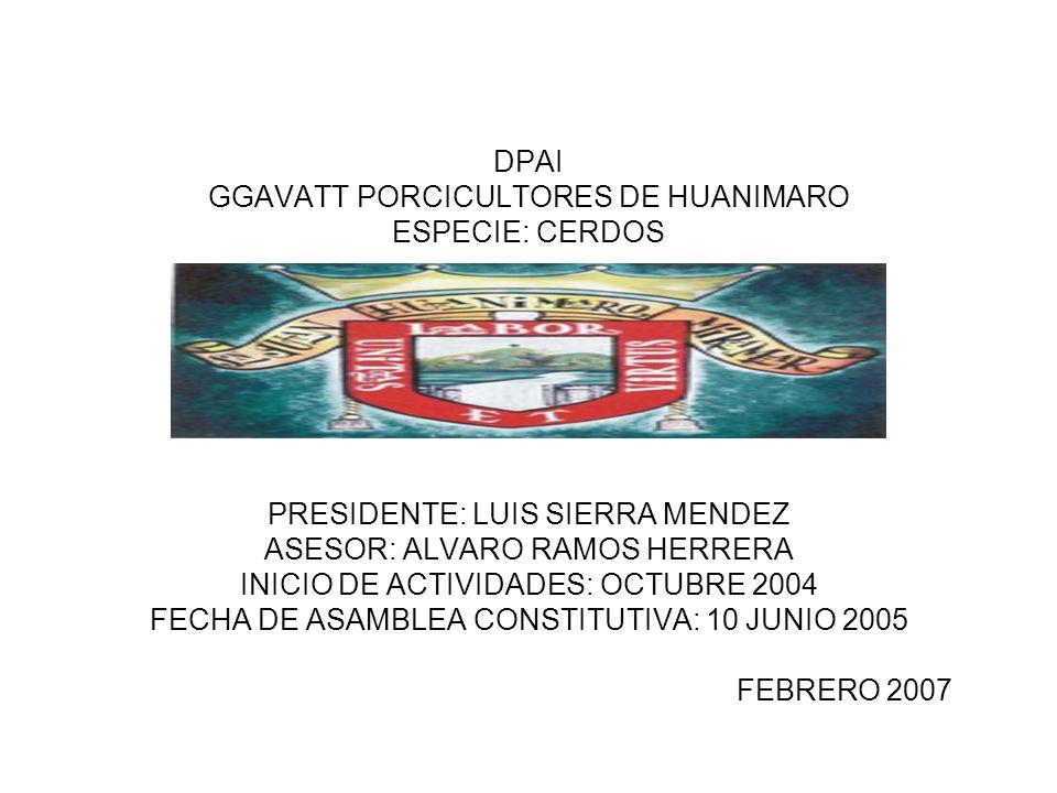 DPAI GGAVATT PORCICULTORES DE HUANIMARO ESPECIE: CERDOS PRESIDENTE: LUIS SIERRA MENDEZ ASESOR: ALVARO RAMOS HERRERA INICIO DE ACTIVIDADES: OCTUBRE 200
