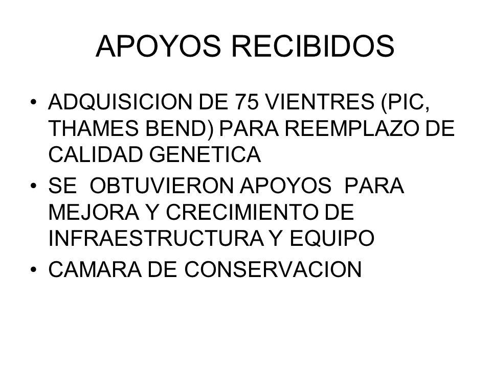 APOYOS RECIBIDOS ADQUISICION DE 75 VIENTRES (PIC, THAMES BEND) PARA REEMPLAZO DE CALIDAD GENETICA SE OBTUVIERON APOYOS PARA MEJORA Y CRECIMIENTO DE IN