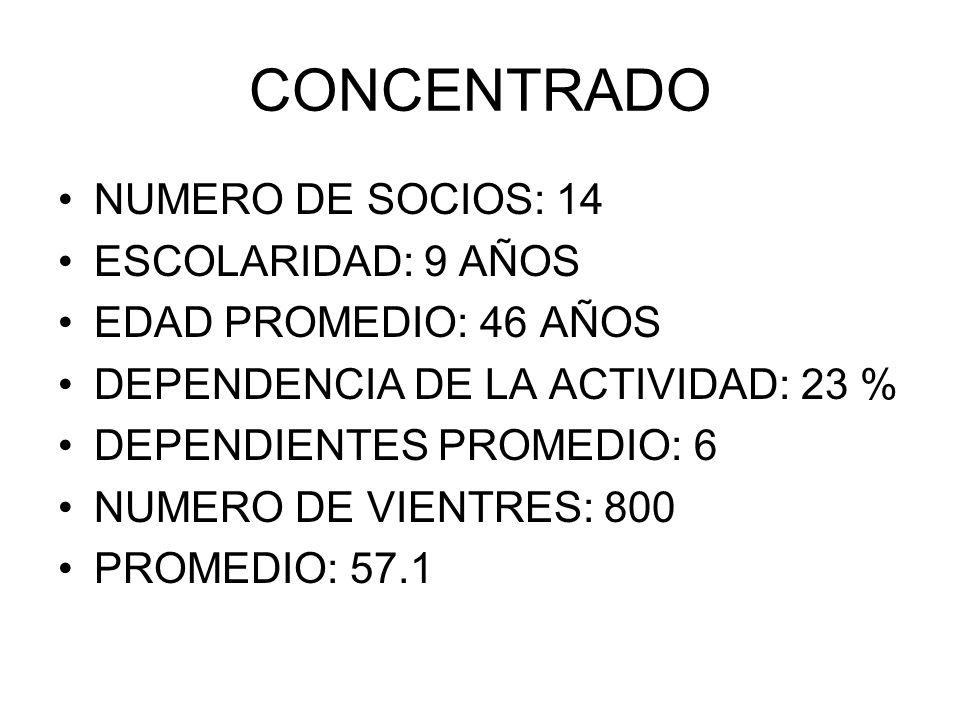 CONCENTRADO NUMERO DE SOCIOS: 14 ESCOLARIDAD: 9 AÑOS EDAD PROMEDIO: 46 AÑOS DEPENDENCIA DE LA ACTIVIDAD: 23 % DEPENDIENTES PROMEDIO: 6 NUMERO DE VIENT