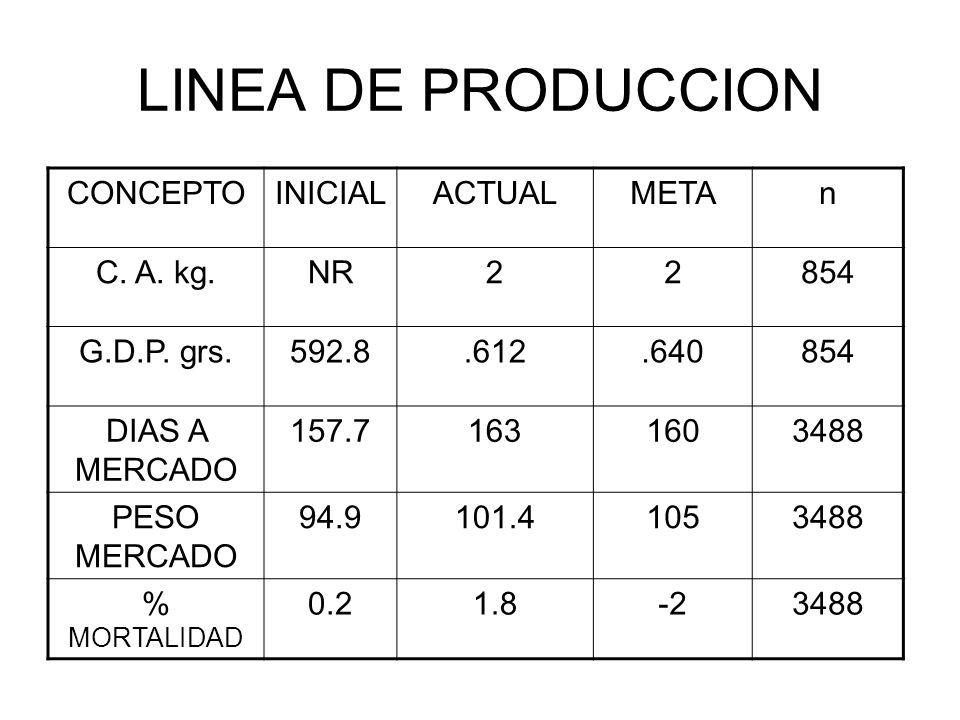 LINEA DE PRODUCCION CONCEPTOINICIALACTUALMETAn C. A. kg.NR22854 G.D.P. grs.592.8.612.640854 DIAS A MERCADO 157.71631603488 PESO MERCADO 94.9101.410534