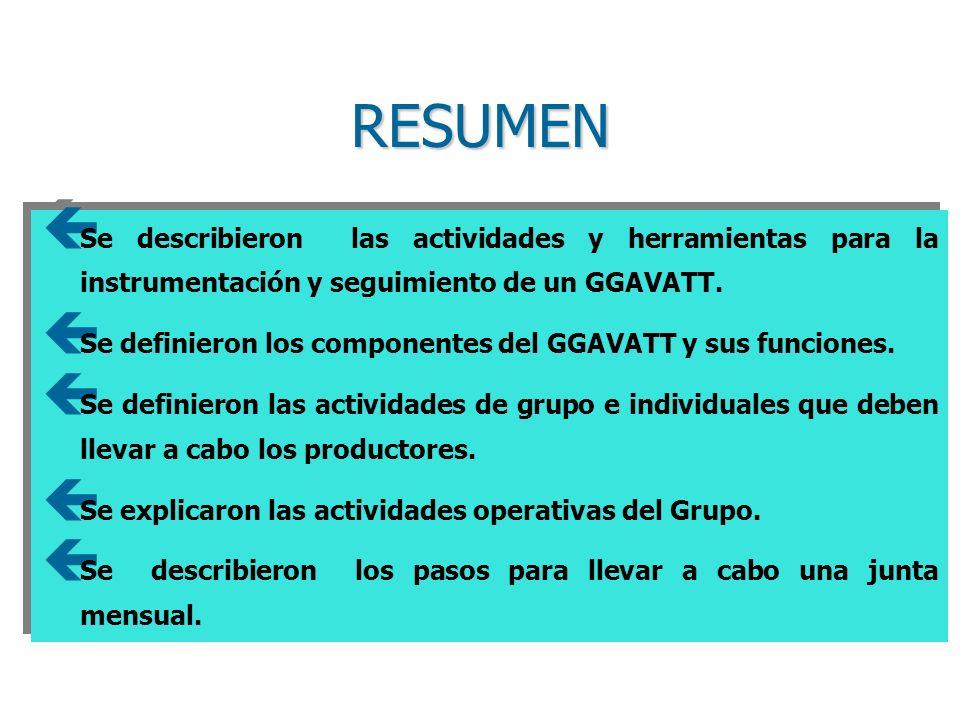RESUMEN ç Se describieron las actividades y herramientas para la instrumentación y seguimiento de un GGAVATT.
