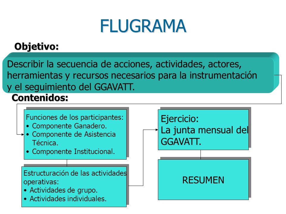 FLUGRAMA Describir la secuencia de acciones, actividades, actores, herramientas y recursos necesarios para la instrumentación y el seguimiento del GGAVATT.