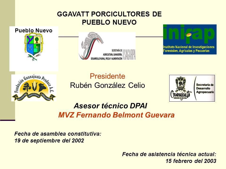 GGAVATT PORCICULTORES DE PUEBLO NUEVO Presidente Rubén González Celio Fecha de asamblea constitutiva: 19 de septiembre del 2002 Fecha de asistencia té