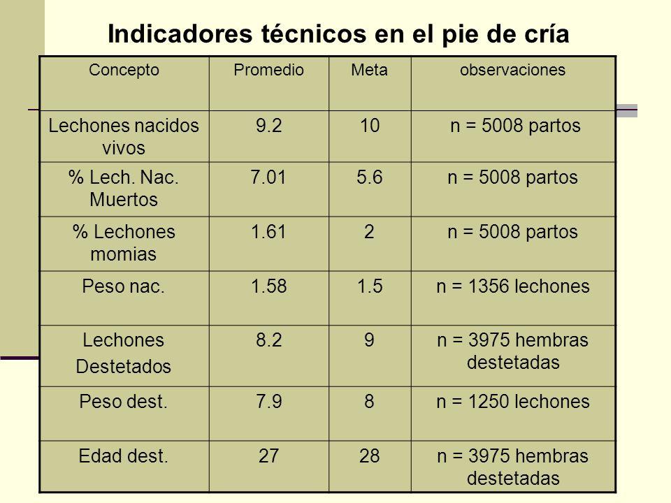 Indicadores técnicos en el pie de cría ConceptoPromedioMetaobservaciones Lechones nacidos vivos 9.210 n = 5008 partos % Lech. Nac. Muertos 7.015.6n =