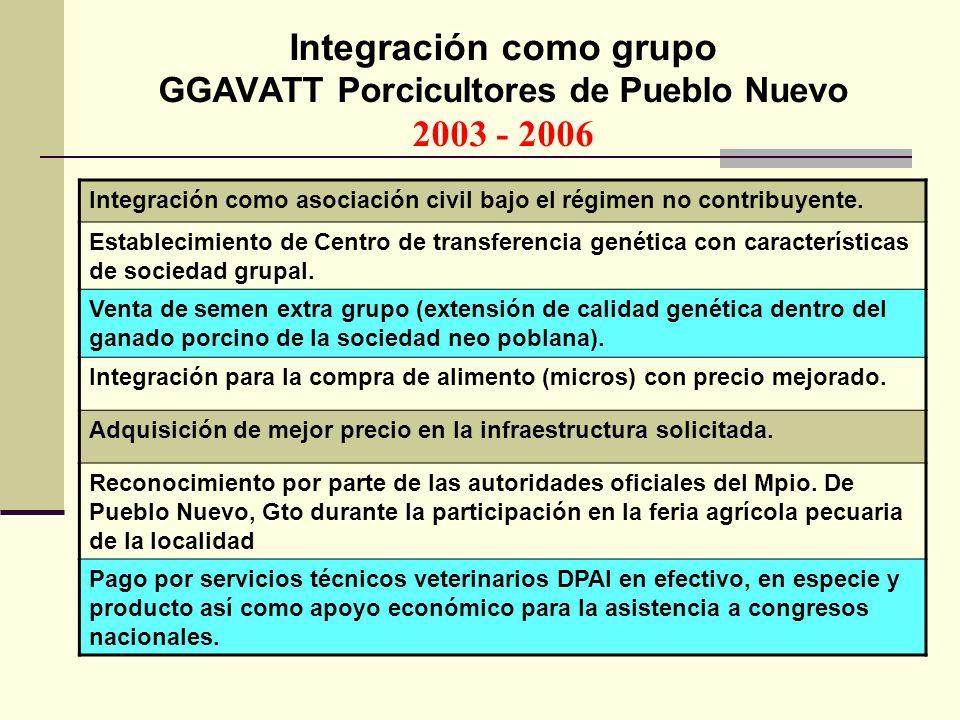 Integración como grupo GGAVATT Porcicultores de Pueblo Nuevo 2003 - 2006 Integración como asociación civil bajo el régimen no contribuyente. Estableci