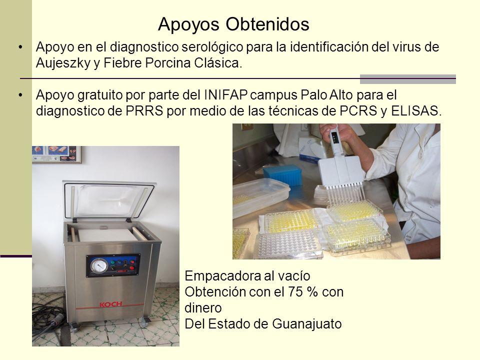 Apoyo en el diagnostico serológico para la identificación del virus de Aujeszky y Fiebre Porcina Clásica. Apoyo gratuito por parte del INIFAP campus P