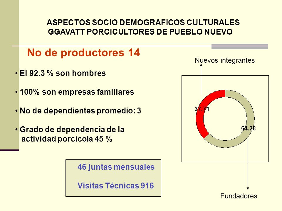 ASPECTOS SOCIO DEMOGRAFICOS CULTURALES GGAVATT PORCICULTORES DE PUEBLO NUEVO No de productores 14 El 92.3 % son hombres 100% son empresas familiares N