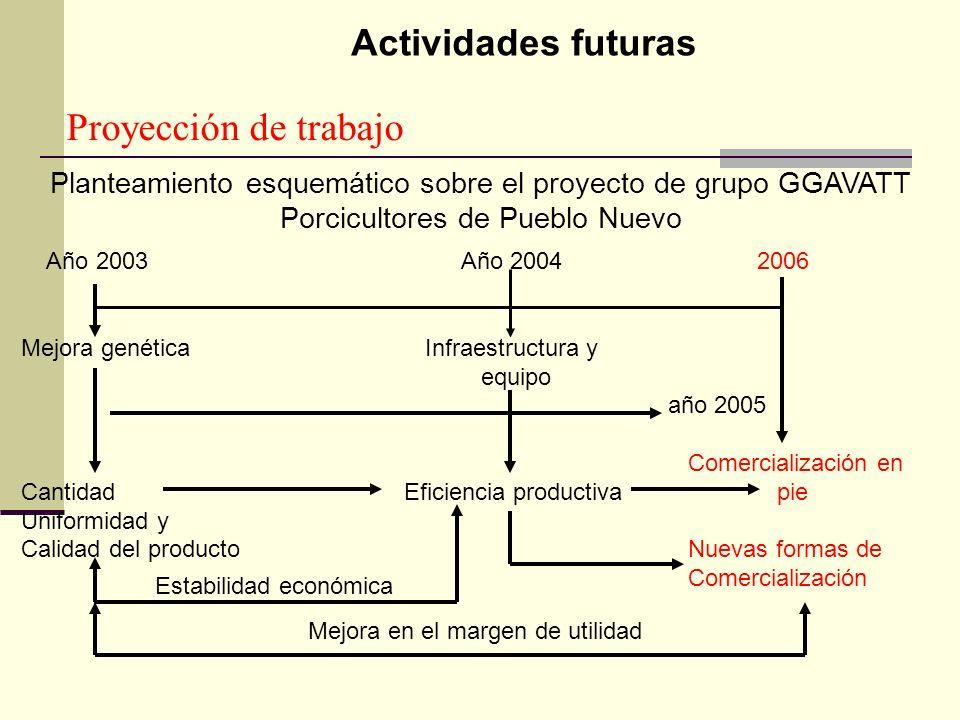 Proyección de trabajo Planteamiento esquemático sobre el proyecto de grupo GGAVATT Porcicultores de Pueblo Nuevo Año 2003 Año 2004 2006 Mejora genétic