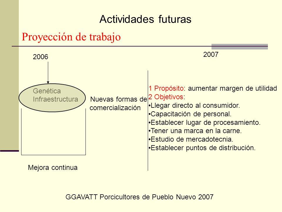 2006 Genética Infraestructura Nuevas formas de comercialización 1 Propósito: aumentar margen de utilidad 2 Objetivos: Llegar directo al consumidor. Ca