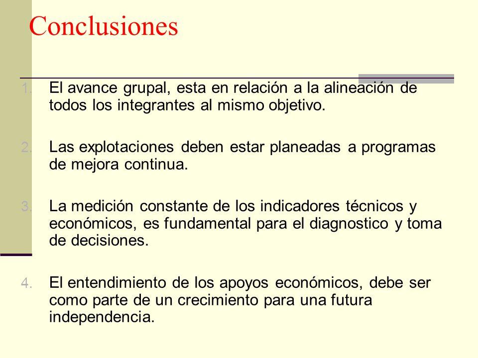 Conclusiones 1. El avance grupal, esta en relación a la alineación de todos los integrantes al mismo objetivo. 2. Las explotaciones deben estar planea
