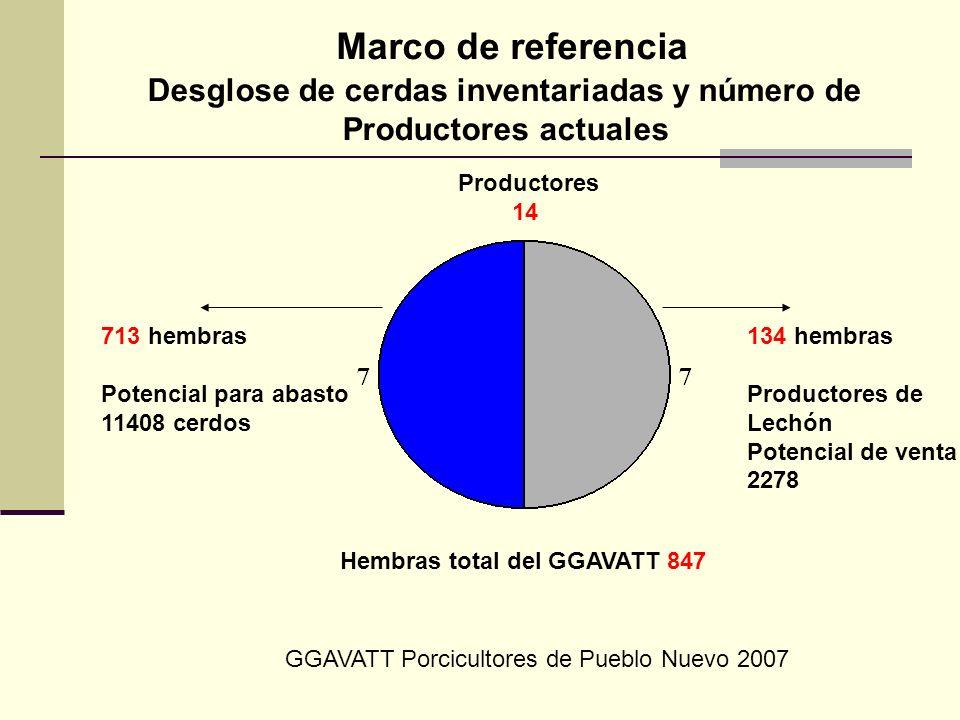 Productores 14 Marco de referencia Desglose de cerdas inventariadas y número de Productores actuales 713 hembras Potencial para abasto 11408 cerdos 13